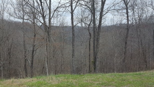 Lots and Land - Silver Point, TN (photo 4)