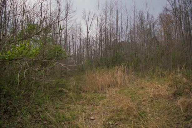 Lots and Land - Ethridge, TN (photo 4)