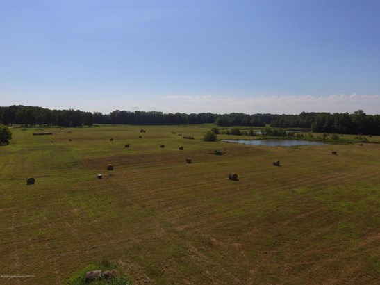 Lots and Land - Byhalia, MS (photo 2)