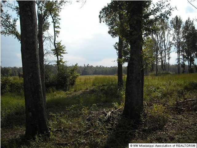 Lots and Land - Byhalia, MS (photo 5)