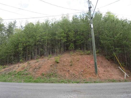 Lots and Land - Gatlinburg, TN (photo 1)