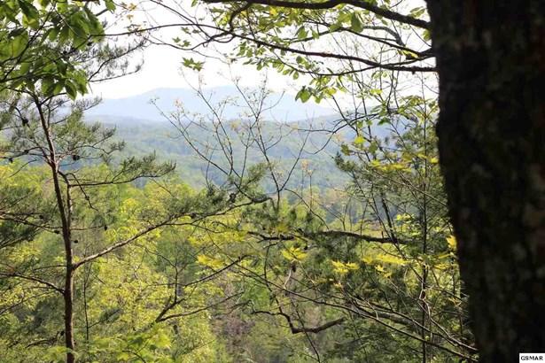 Lots and Land - Gatlinburg, TN (photo 4)