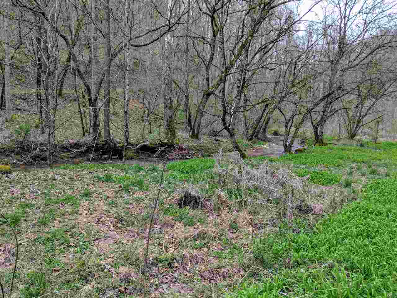 Lots and Land - Tazewell, TN (photo 1)