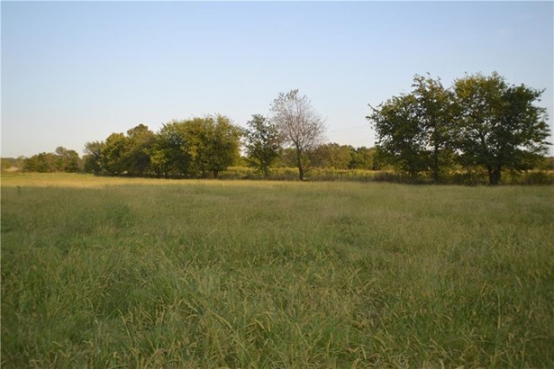 Lots and Land - Maysville, AR (photo 1)