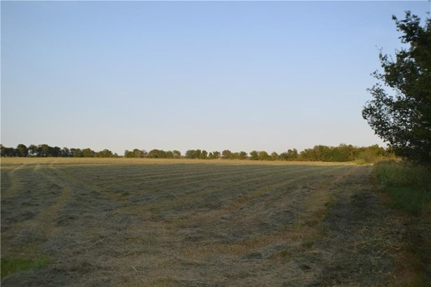 Lots and Land - Maysville, AR (photo 5)
