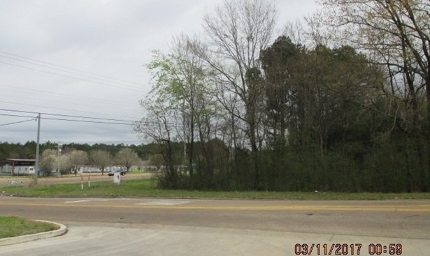 Lots and Land - Jackson, MS (photo 3)