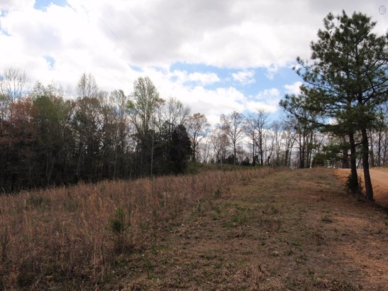 Lots and Land - Lyles, TN (photo 4)