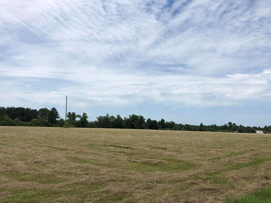Lots and Land - Ethelsville, AL (photo 2)