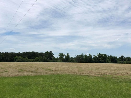 Lots and Land - Ethelsville, AL (photo 3)