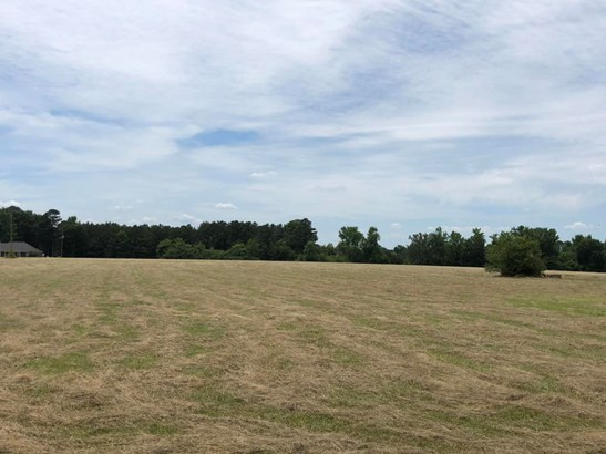 Lots and Land - Ethelsville, AL (photo 4)