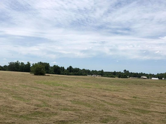 Lots and Land - Ethelsville, AL (photo 5)