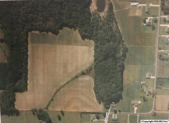 Lots and Land - ATHENS, AL (photo 1)