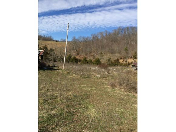 Lots and Land - Eidson, TN (photo 1)