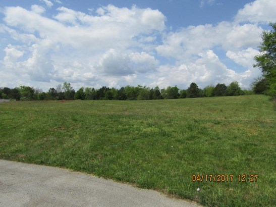 Lots and Land - Ringgold, GA (photo 3)