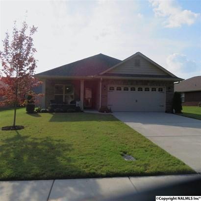 Residential/Single Family - MERIDIANVILLE, AL (photo 1)