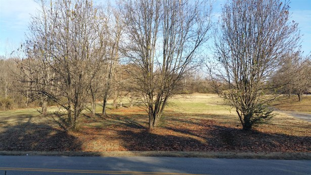 Lots and Land - Nashville, TN (photo 1)