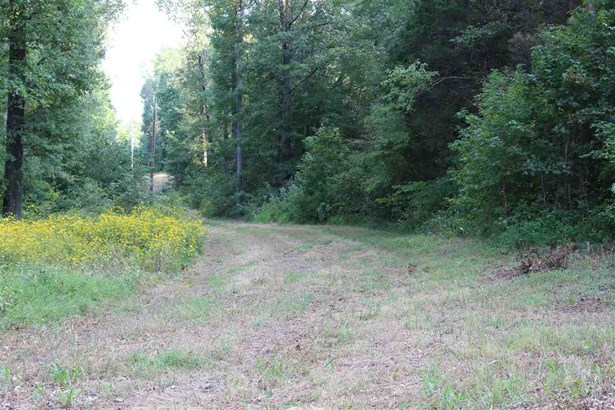 Lots and Land - Middleton, TN (photo 2)