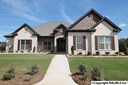 Residential/Single Family - OWENS CROSS ROADS, AL (photo 1)