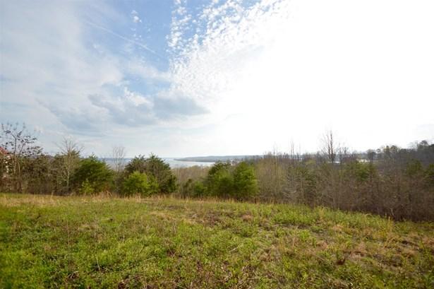 Lots and Land - Waverly, TN (photo 3)