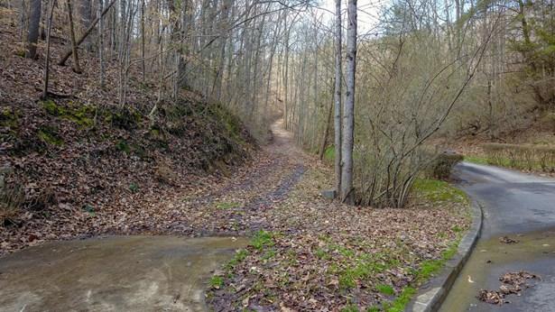 Lots and Land - Oak Ridge, TN (photo 3)