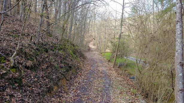 Lots and Land - Oak Ridge, TN (photo 4)