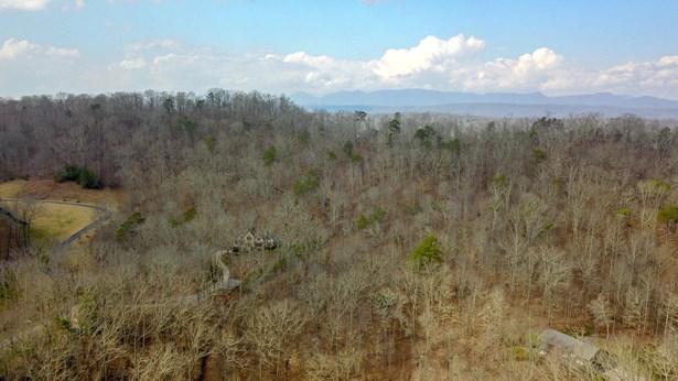 Lots and Land - Oak Ridge, TN (photo 5)