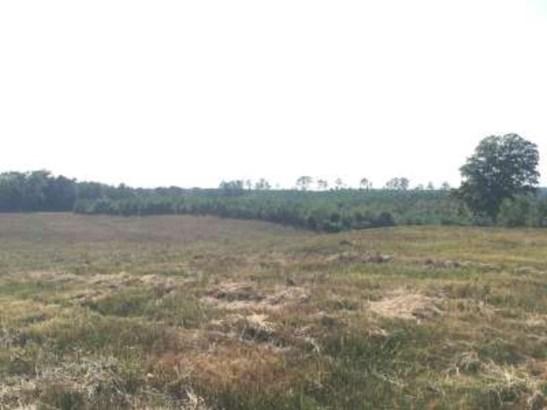 Lots and Land - Jayess, MS (photo 3)
