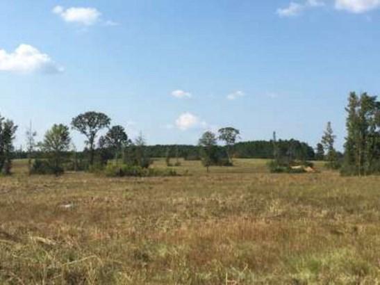 Lots and Land - Jayess, MS (photo 4)