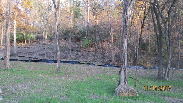 Lots and Land - Hendersonville, TN (photo 3)