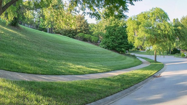 Lots and Land - Knoxville, TN (photo 4)