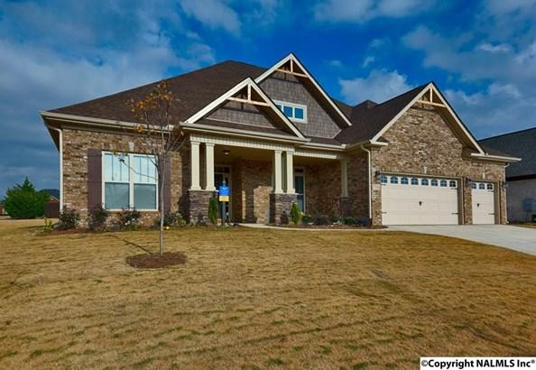 Residential/Single Family - OWENS CROSS ROADS, AL (photo 1)