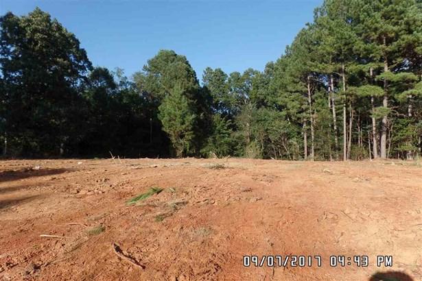 Lots and Land - Selmer, TN (photo 1)