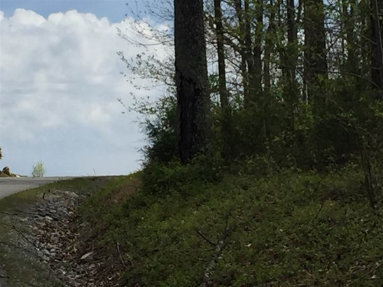 Lots and Land - New Tazewell, TN (photo 3)