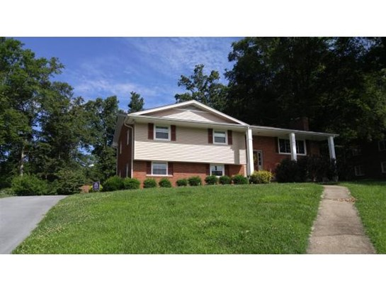 Residential/Single Family - Kingsport, TN (photo 1)