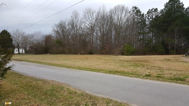 Lots and Land - Booneville, MS (photo 4)