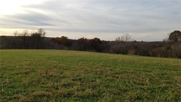 Lots and Land - Elkins, AR (photo 1)