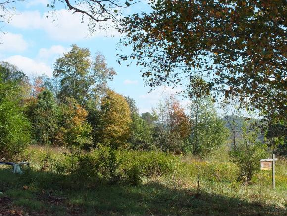 Lots and Land - Rogersville, TN (photo 2)