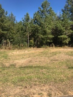Lots and Land - Florence, MS (photo 1)