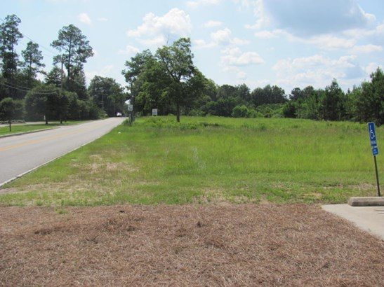 Lots and Land - Hattiesburg, MS (photo 1)