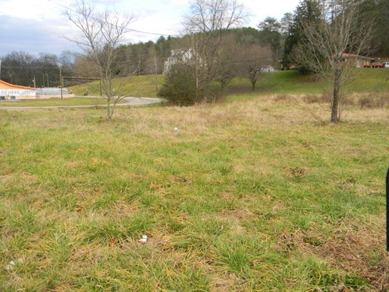 Lots and Land - Sale Creek, TN