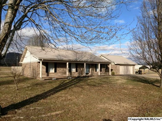 Residential/Single Family - WOODVILLE, AL (photo 1)