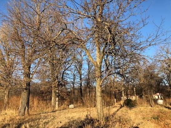 Lots and Land - Eucha, OK (photo 5)