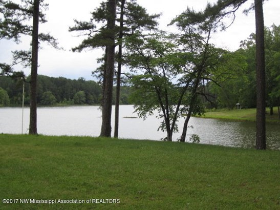 Residential/Single Family - Potts Camp, MS (photo 1)