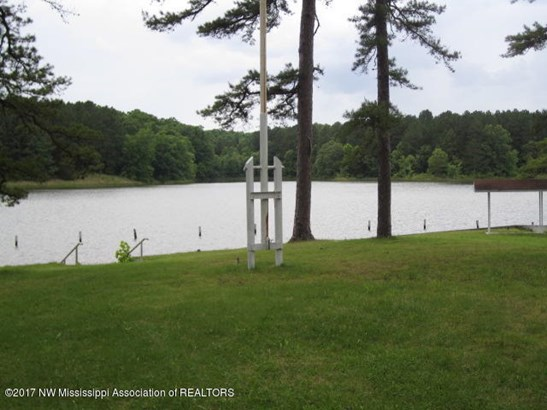 Residential/Single Family - Potts Camp, MS (photo 2)