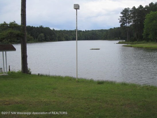 Residential/Single Family - Potts Camp, MS (photo 4)