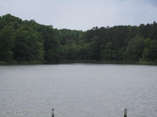 Residential/Single Family - Potts Camp, MS (photo 5)