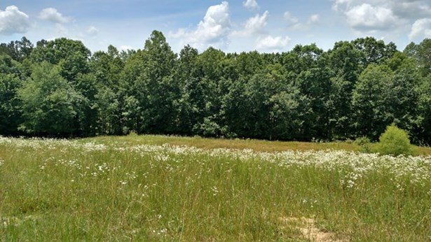 Lots and Land - Jamestown, TN (photo 2)