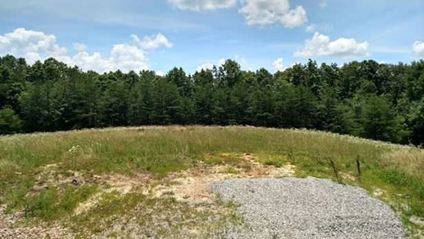Lots and Land - Jamestown, TN (photo 3)