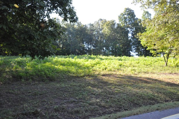 Lots and Land - Whitwell, TN (photo 1)