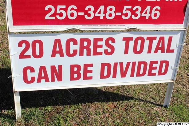 Lots and Land - NEW MARKET, AL (photo 3)